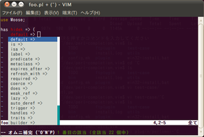 perl-completion-vim2