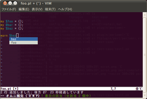 perl-completion-vim3