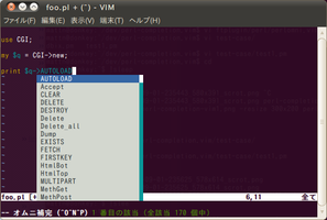perl-completion-vim4
